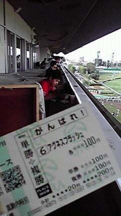 昨日の札幌競馬場