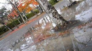 11月3日雨・晴れ・雨