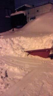 雪なんて・・・!